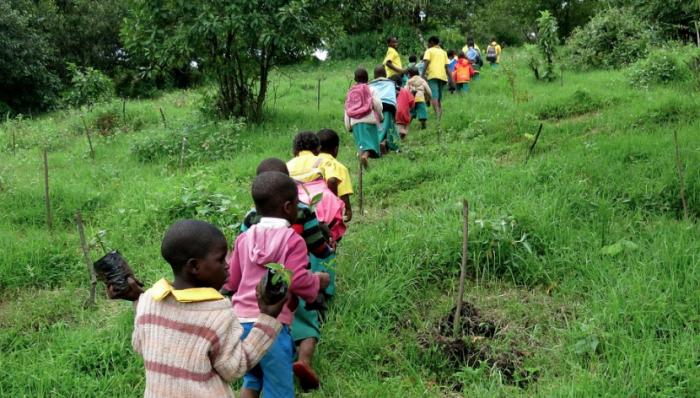 Účastníme se dobročinné sbírky – Voda pro Kamerun